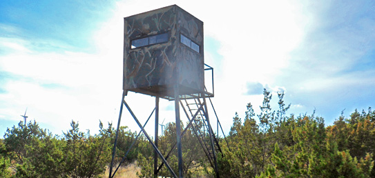 ALDO Ranch - Texas Big Game Hunting Trips